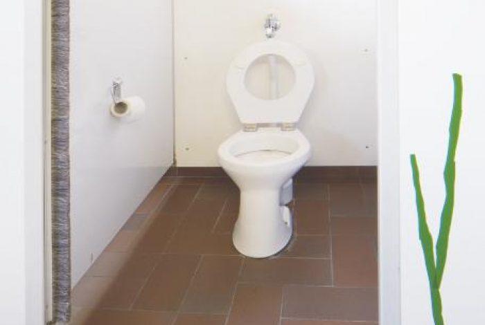 Altbestand WC Anlage